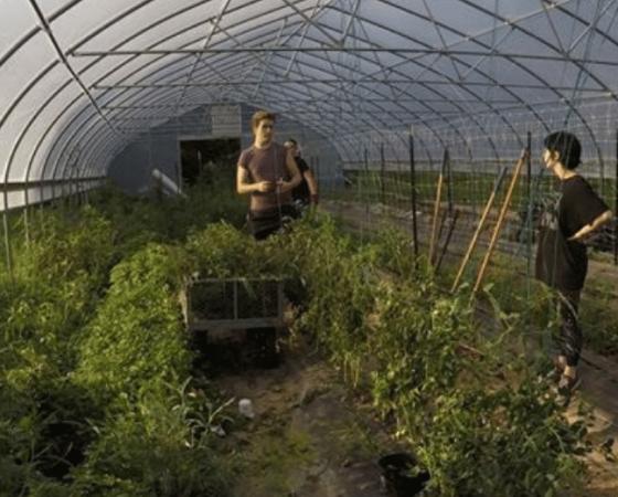 Cowan COmmunity Center Grow Appalachia