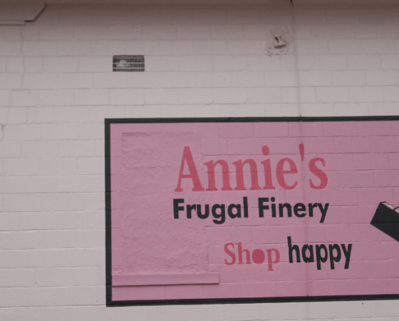 Annie's Frugal Finery solar in Letcher County