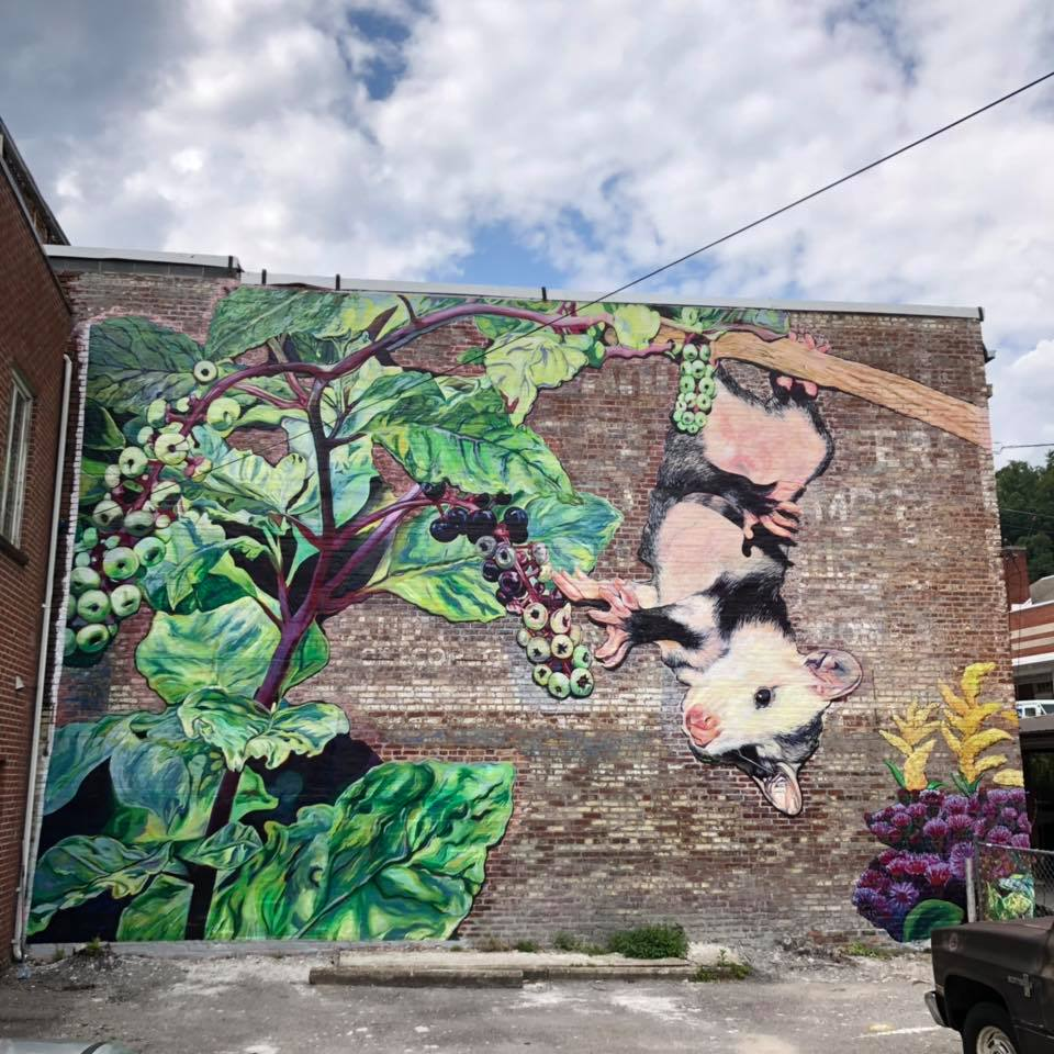 Lacy Hale's mural in downtown Harlan Kentucky shows Appalachian art. MACED provides artists with business loans and support
