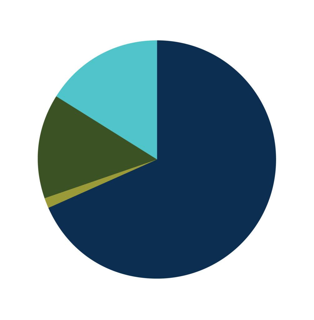 web MA pie chart 1